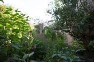 jardin-6