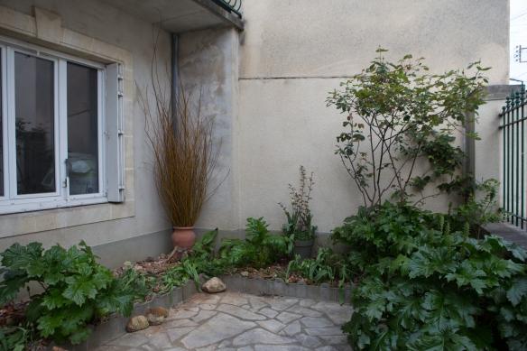 jardin au printemps -2