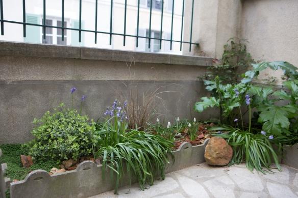 jardin au printemps -3