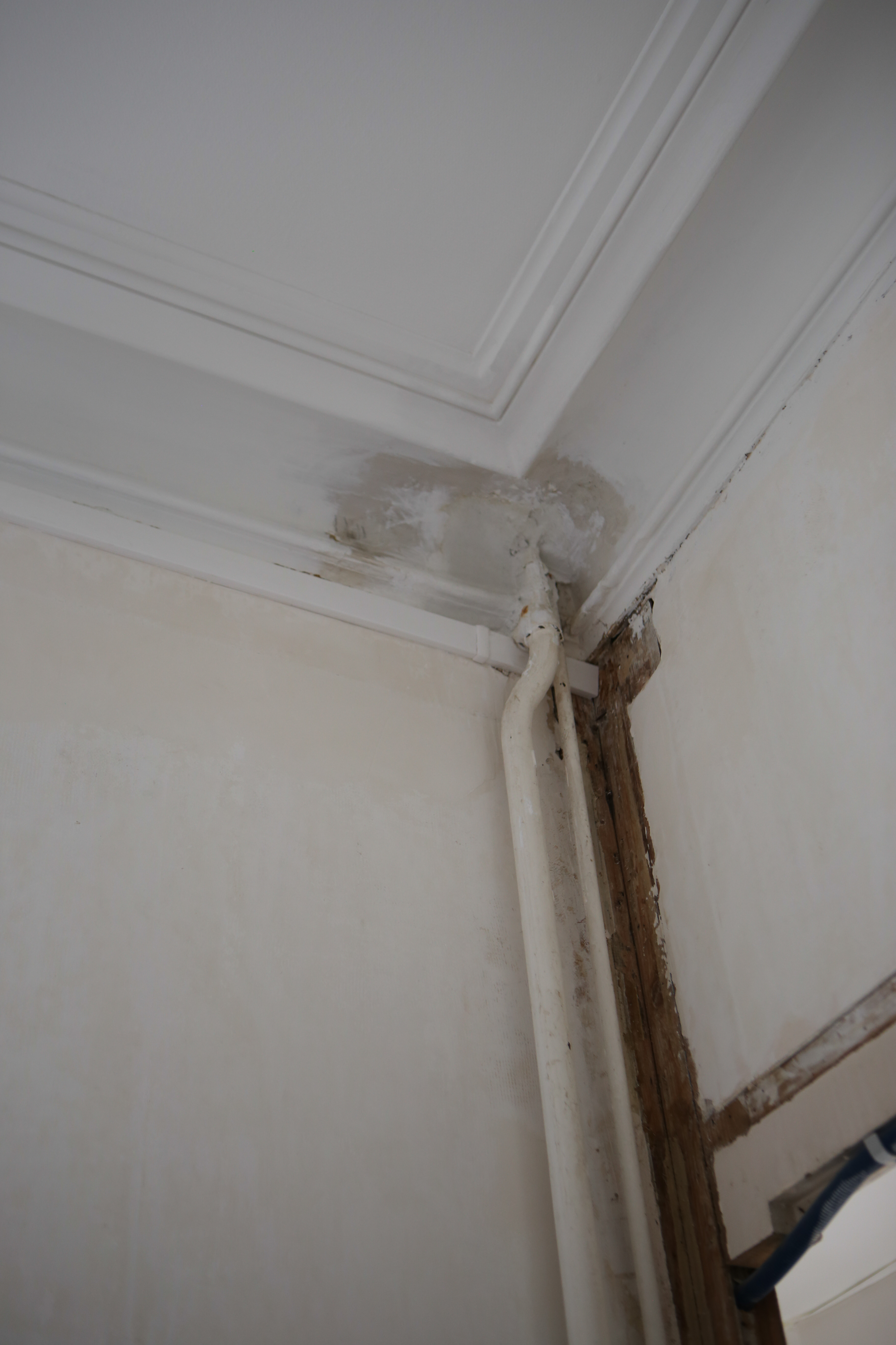 Goulotte Pour Plafond réparation de moulure en plâtre | au 33 de la rue